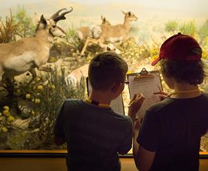 Collaborating with Museums and Schools to Make Field Trips More Beneficial
